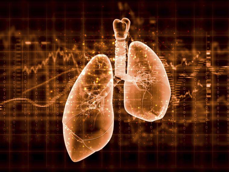 Átlagos tüdőkapacitás